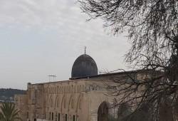مفتي القدس يدعو لإنقاذ الأقصى من اعتداءات الاحتلال