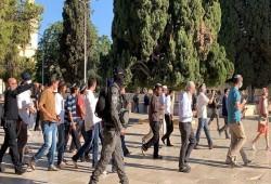 85 مستوطنا يقتحمون المسجد الأقصى